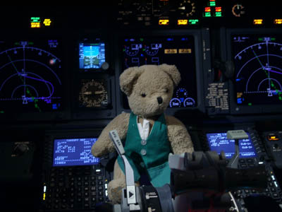 The pilot kindly let Barnaby visit the flight deck of the Boeing 737 before take off, it looks very complicated!